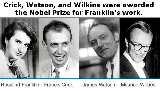 Franklin, Crick, Watson, and Wilkins