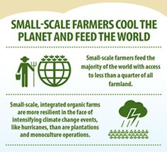 Small-scale farmers