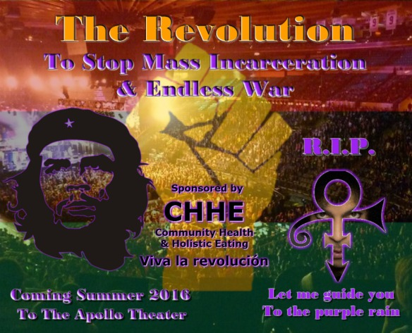 The Revolution - Prince Tribute Concert