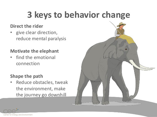 The rider and the elephant